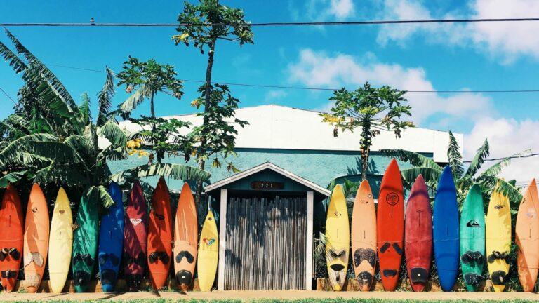 Hawaii_surfplank_kleuren_palmboom_Event Travel Sterrebeek